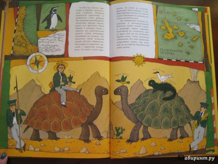 Иллюстрация 14 из 30 для Чарльз Дарвин - Ли-Юнь Инь | Лабиринт - книги. Источник: Никoль