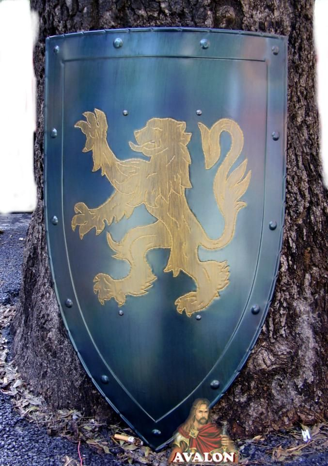 Medieval Shields : Medieval shield - Lion Shield