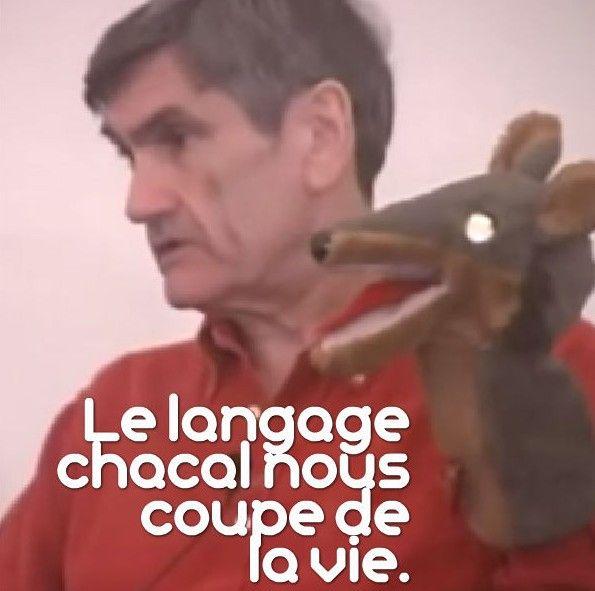 CNV : introduction à la Communication Non Violente & initiation aux langages chacal et girafe