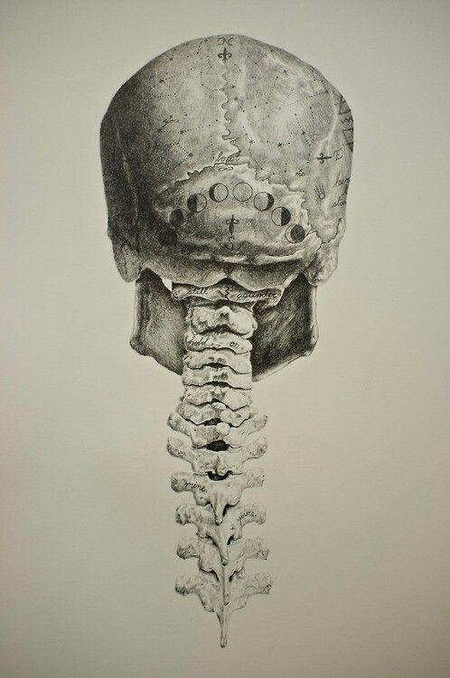 espina dorsal Nuestra columna vertebral es un bien muy preciado da soporte a nuestros miembros y mantener la cabeza hacia abajo a veces siento dolores agudos en la columna, que puede ser causada por varios factores como el mal colchón, almohada demasiado alta o baja, la mala postura, entre muchos otros.