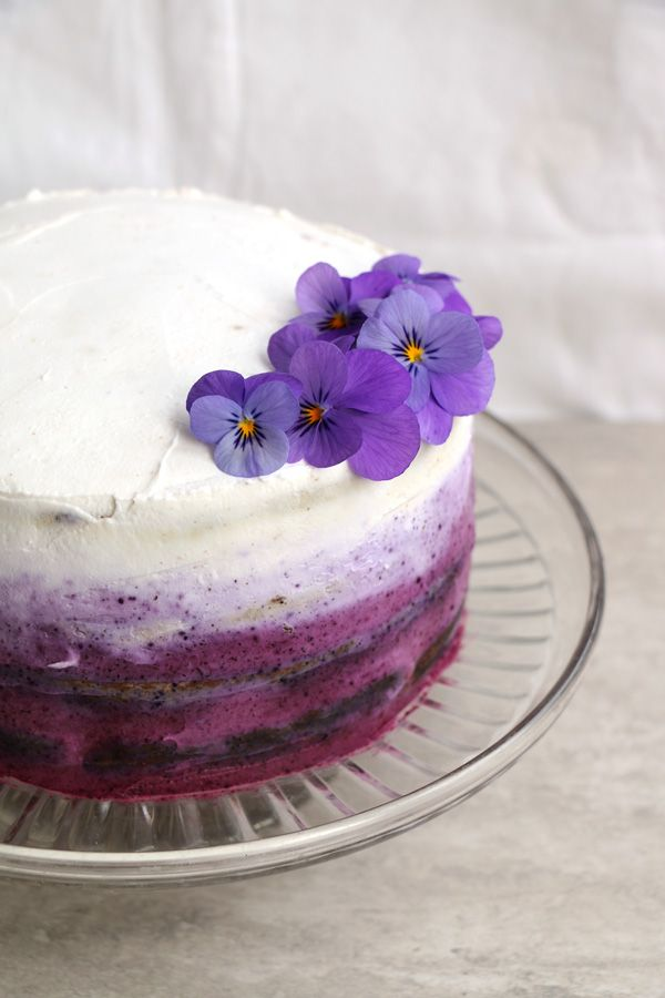 Vegan Gluten-free Blueberry Cake with Coconut Frosting - Nirvana Cakery