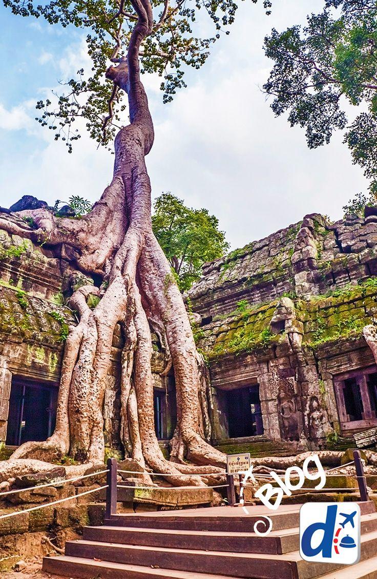 #Viaja al #sudeste asiático con Despegar y estas 3 rutas que te ofrece en su #blog de #viajes y #turismo.  Entérate dónde viajar cuando llegues al sudeste asiático con los #vuelosbaratos de #Despegar #blog #blogdeviajes #trip #travel