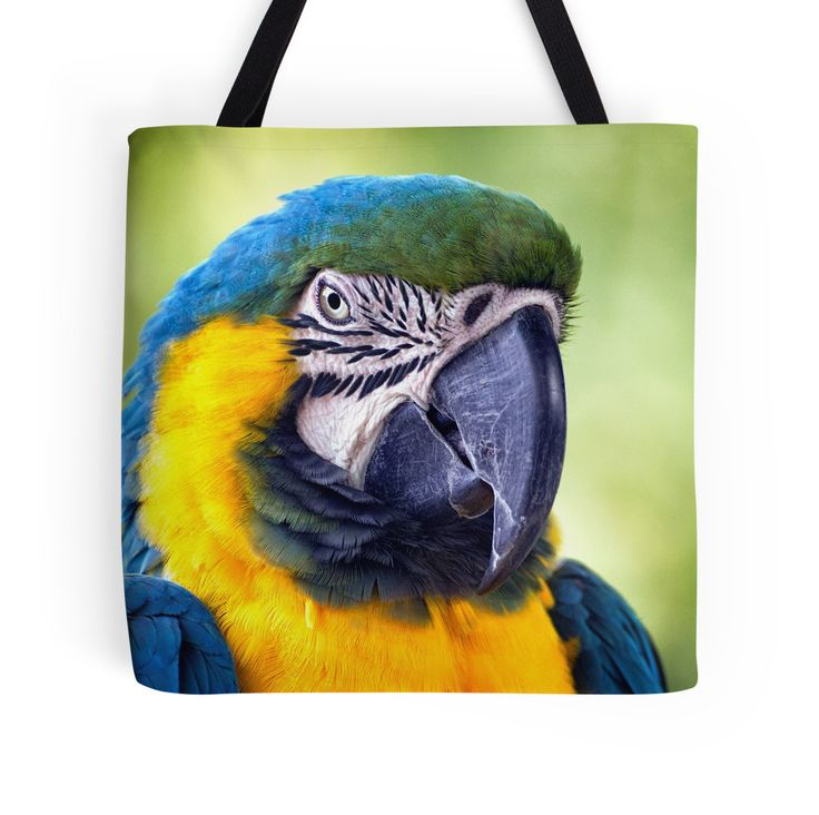 Macaw Parrot tote bag by Vicki Field