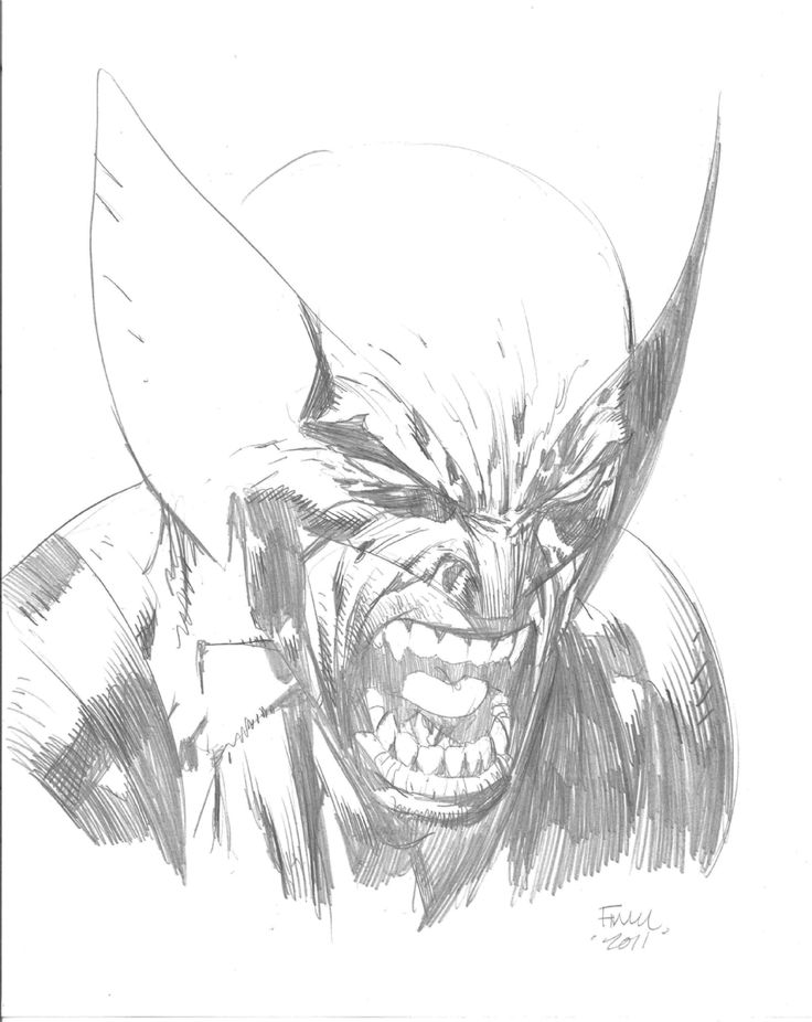 David Finch - Wolverine Comic Art