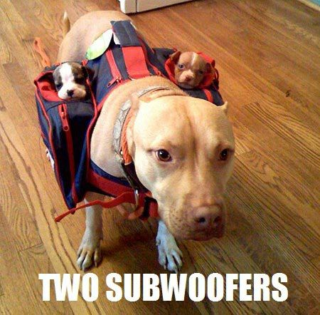 Two Subwoofers. So cute.