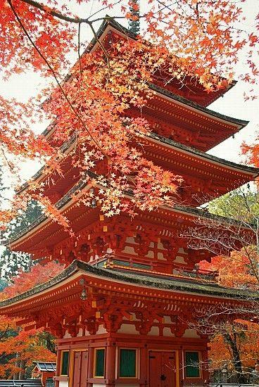 長谷寺:紅葉と五重塔