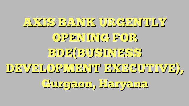 AXIS BANK URGENTLY OPENING FOR BDE(BUSINESS DEVELOPMENT EXECUTIVE), Gurgaon, Haryana