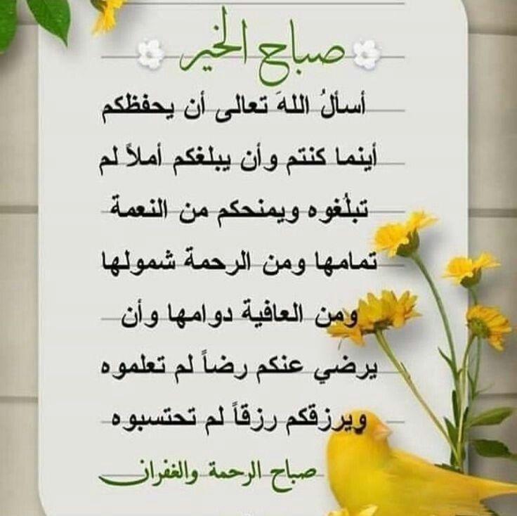 Pin By Aboodi Kassem On صباح الخير2 Morning Quotes Flower Wallpaper Quran Tilawat