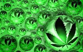imagenes de marihuanas - Buscar con Google