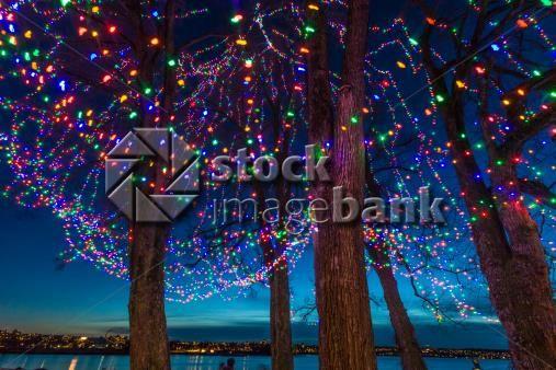Christmas Lights ! Festivities