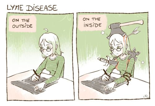 The Lyme Diary
