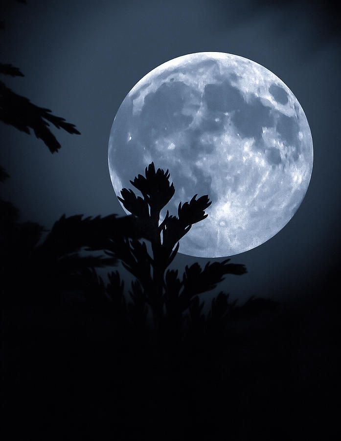 beauty of moon here - photo #16