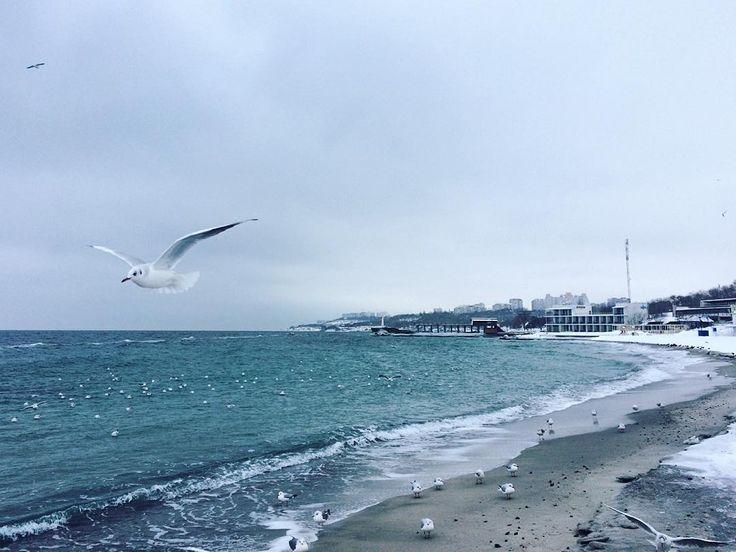 Langeron Beach, Odessa Ukraine