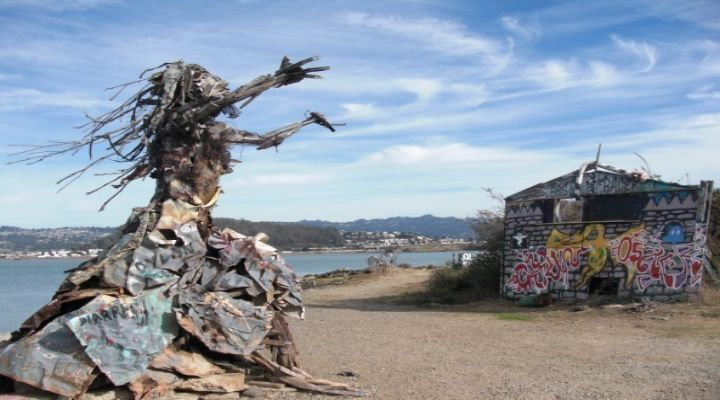 Albany Bulb: The Dumping Ground Turned Art Gallery Turned Natural Habitat