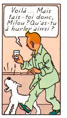 La vie de Tintin | Ca fait 5 jours que Tintin n'a pas nourri Milou…