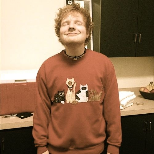 Ed Sheeran...and his cat sweater.