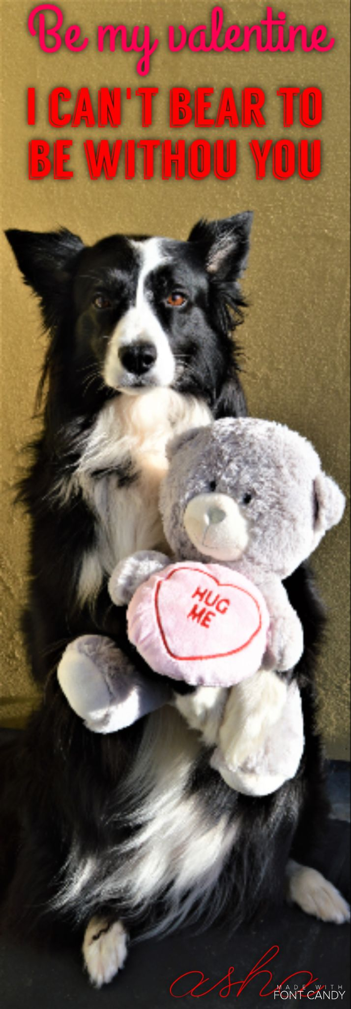 BE MY VALENTINE I CAN'T BEAR TO BE WITHOUT YOU?