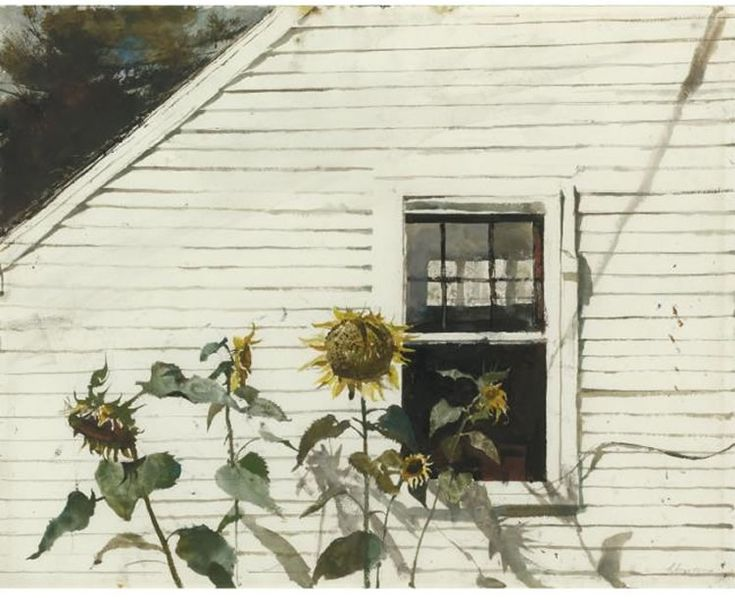 Artist: Andrew Wyeth Title: SUNFLOWERS