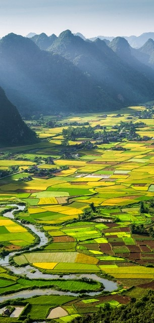 Alternating rice plots in the Bacson Valley in Bac Son, Lang Son, Vietnam • photo: Hai Thinh Hoang.