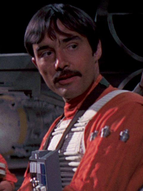 Biggs Darklighter was a human male pilot who fought for the Alliance to Restore the Republic during the early days of the Galactic Civil War. He grew up on the desert world of Tatooine, where he became a close boyhood friend of Luke Skywalker.