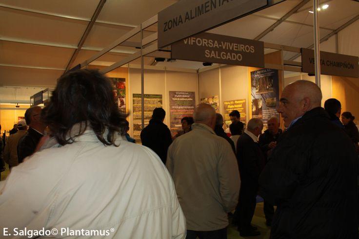 ExpoOrdes 2013 un exito de visitantes.