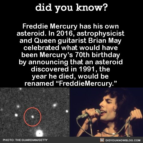 did you know? - Freddie Mercury has his own asteroid. In ...