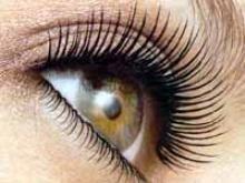 Google Afbeeldingen resultaat voor http://www.beautyglow.nl/wp-content/uploads/2012/10/Fabrikant-Botox-ontdekt-bij-toeval-middel-voor-lange-en-dikke-wimpers-17732_image.jpg