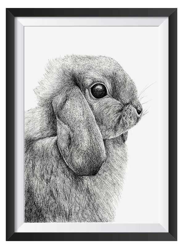 Bunny illsutrated with Pen by Nicoll van der Nest