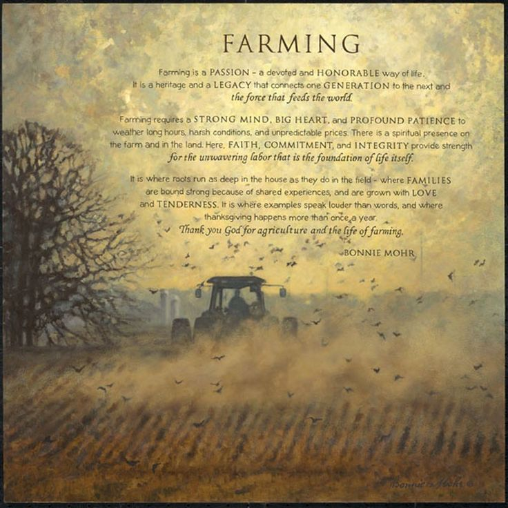 Farming Quotes: 17 Best Images About Farming & Ranching On Pinterest