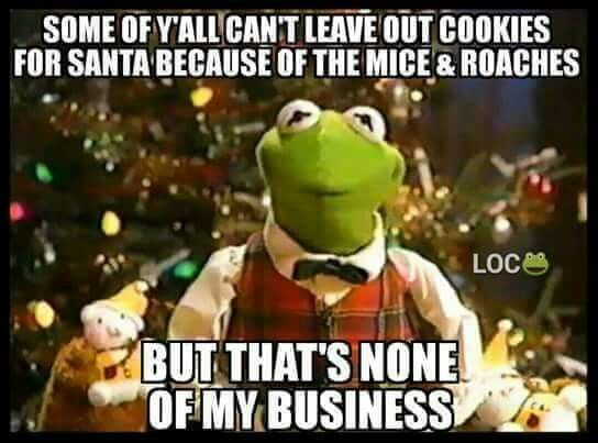 The Best Of The That S None Of My Business Kermit Meme: 17 Best Images About KERMIT SAYS... On Pinterest