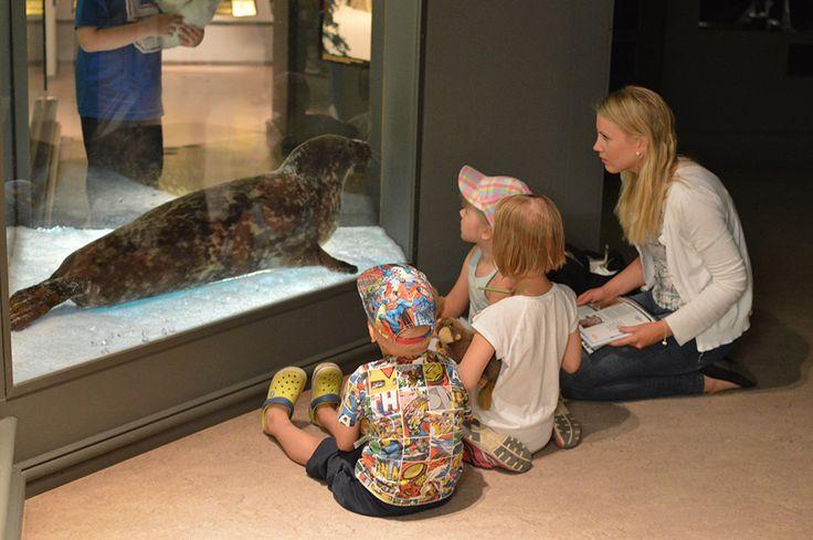 Eläinten jäjillä -kierroksella lapset oppivat tunnistamaan eläimiä ja niiden jälkiä. Luuppi, Oulu (Finland)
