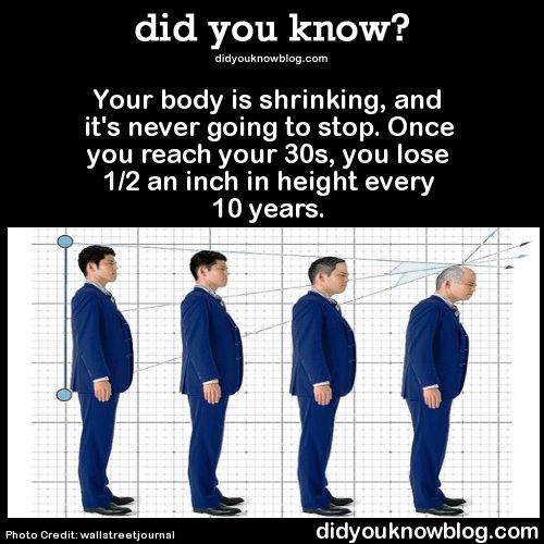 did you know?, Your body is shrinking, and it's never going to...