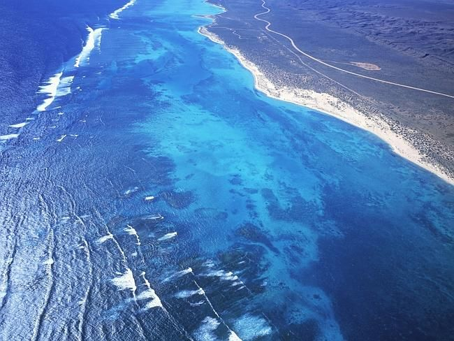 Ningaloo Marine Park, WA.  At places it is possible to swim from the shore of WA to the world's largest fringing reef, the Ningaloo which is home to more that 500 species of fish, turtles and rays.