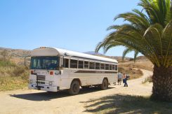Safari Bus... Between Avalon & Two Harbors. Catalina Island.