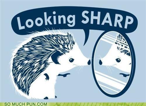 I am such a sucker for hedgehog-related puns.