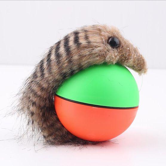 Regala a tu gato una bola con un ratón para perseguir #Gatos #PETit #LePETitStore