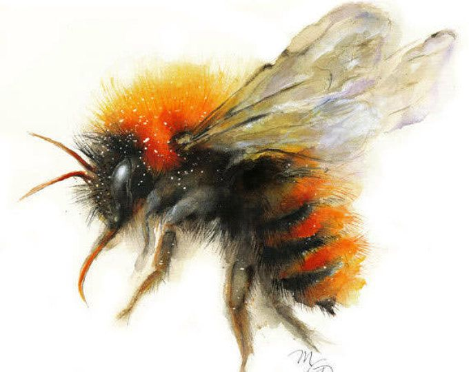 Bee – giclee print – Bumble Bee – modern art – Wall decor – Animal painting