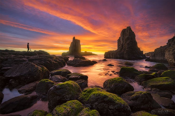 Cathedral_Rocks_Kiama.jpg (900×600)