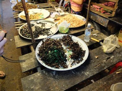 Siem Reap Street Food Evening Tour - Siem Reap   Viator
