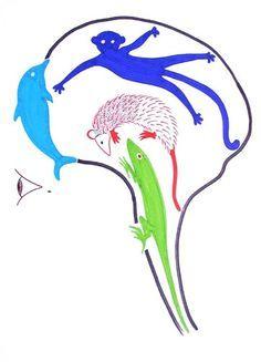 Evolutionary Psychology / Quadrune Brain / Triune Brain charts