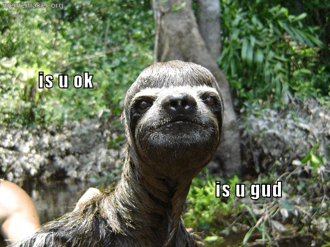 sloth-meme «  Meme Maker – Make a Meme Online