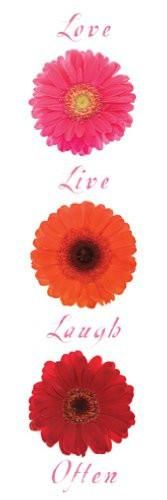 """""""Live, Laugh, Love, Often"""" (12x36) - FAR50031"""