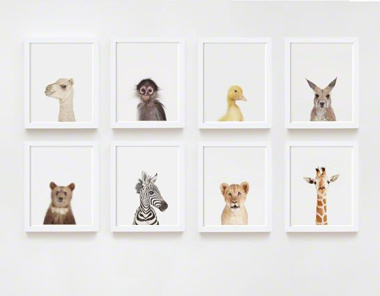 Little Darlings Series for Charlie's room | The Animal Print Shop by Sharon Montrose
