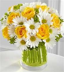 daisy and roses- they are absolutley beautiful!  my favorite!