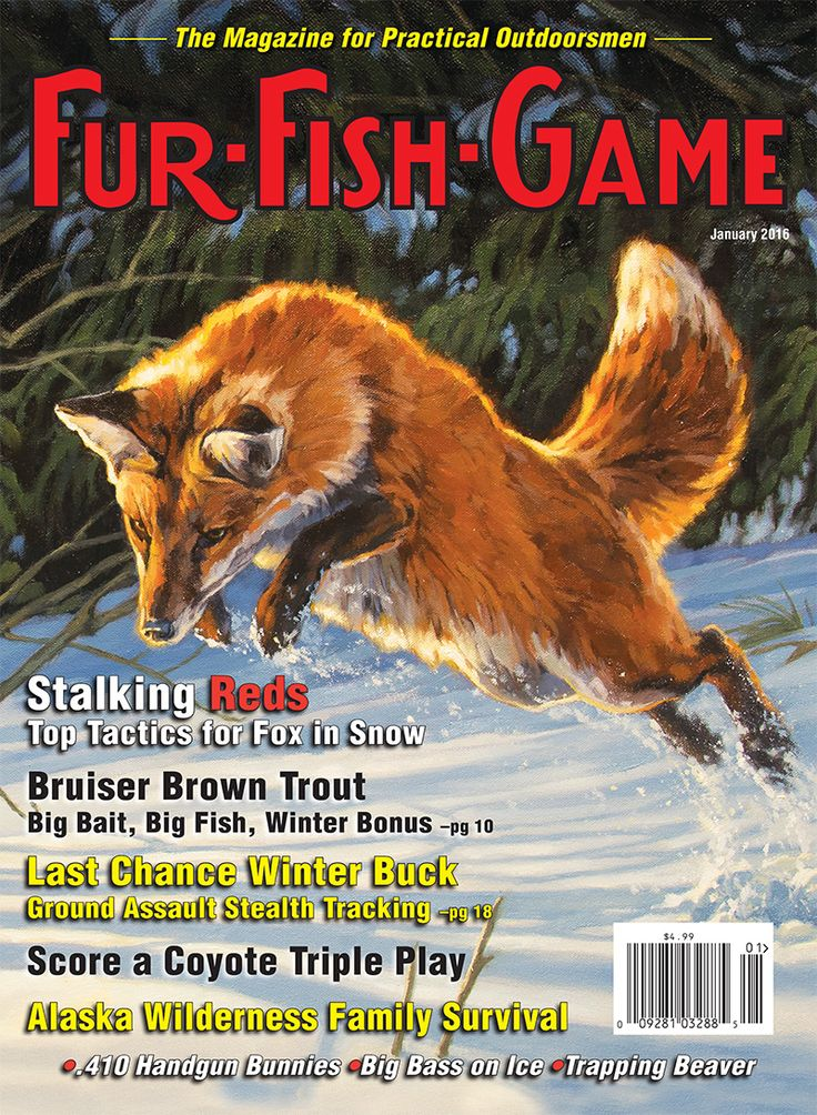 51 best fur fish game magazine covers images on pinterest for Game and fish magazine