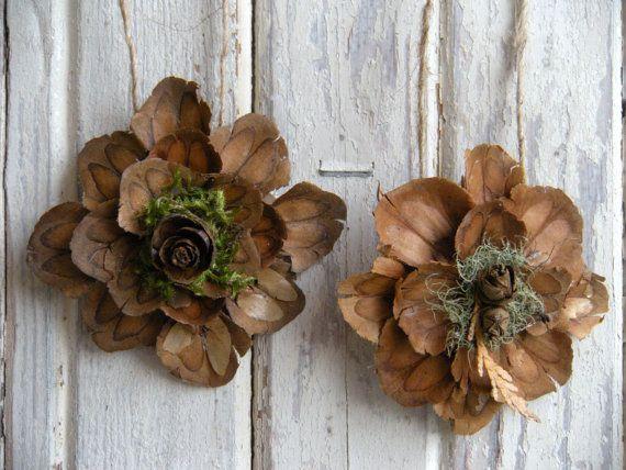 pine cone flower