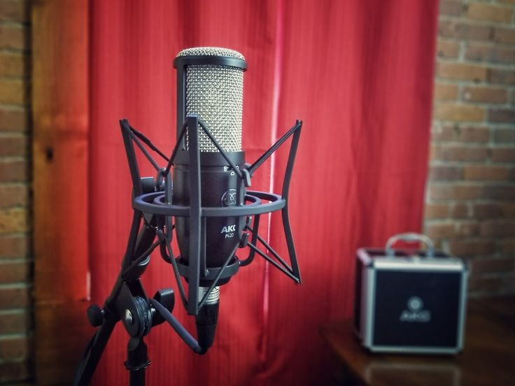 AKG Perception 420 is great all arounder. This is must have mic for any budget studio.