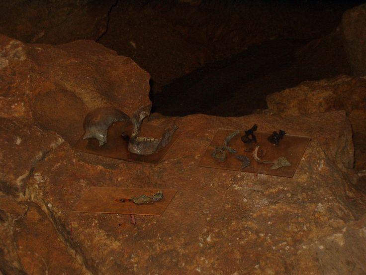 Koněpruské jeskyně nálezy
