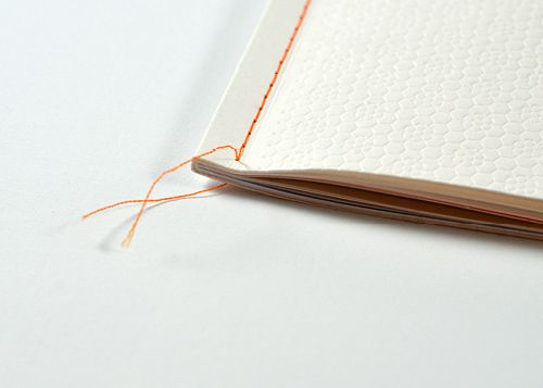 Reliure couture Singer - Singer sewn binding   Hoet&Hoet edition for Cefic/Mr Squinzi in collaboration with edito3.