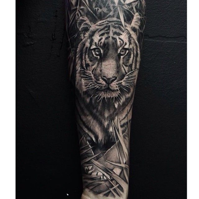 Tiger done earlier